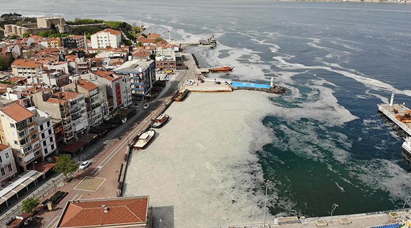 Marmara Denizi'ndeki 'deniz salyası' hakkında uzmanlardan endişeli uyarılar | Ekoloji Birliği
